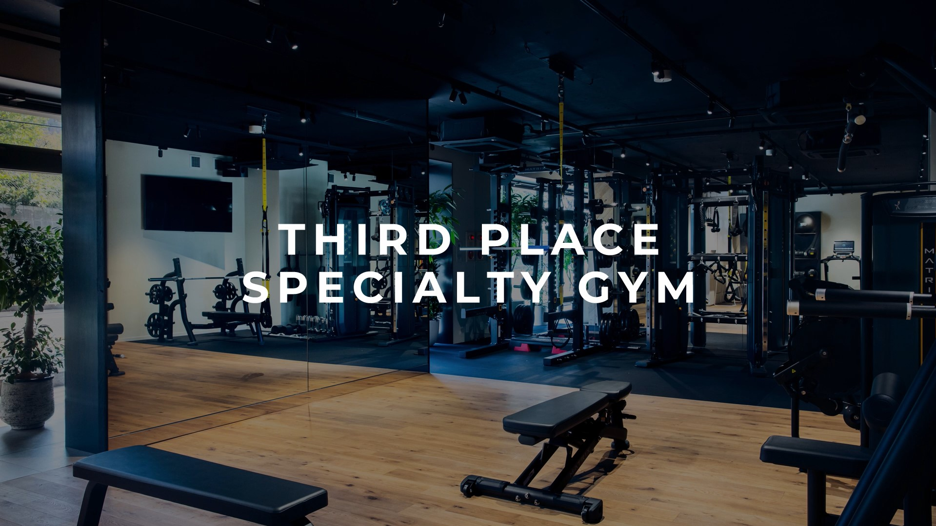 THIRD PLACE SPECIALITY GYM
