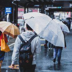 雨の日と食後の共通点