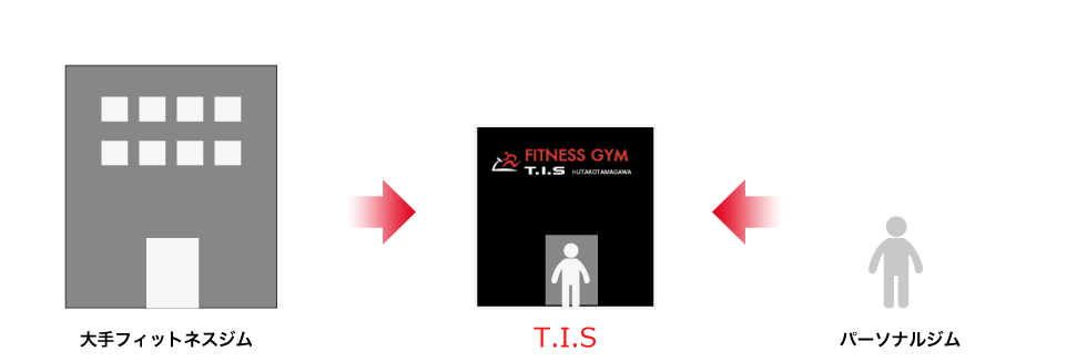 TISの特徴