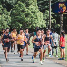 ハーフマラソン開催&交通規制