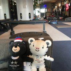 平昌オリンピックを応援しています!
