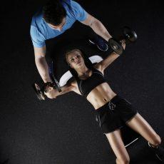 筋肉へのアプローチ