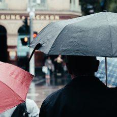 梅雨でやる気が上がらない。。