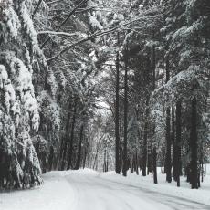 雪の上でも歩ける?身体作り
