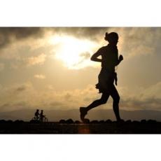 筋肥大の為のトレーニング頻度