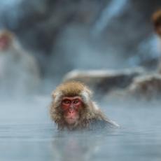 〜半身浴と全身浴の効果〜