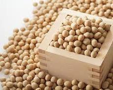 大豆を食べよう