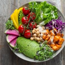 動物性タンパク質だけでなく植物性タンパク質を!
