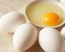 卵の栄養効果