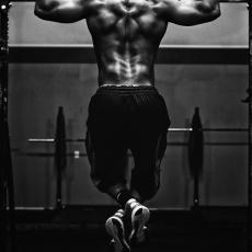 筋肉は破壊と再生
