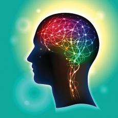 筋トレで分泌される三大神経伝達物質
